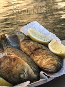 fishing Crimea