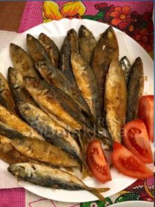 fresh-catch-boat-balaclava
