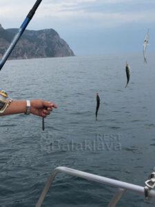 on a boat-fishing-in-crimea